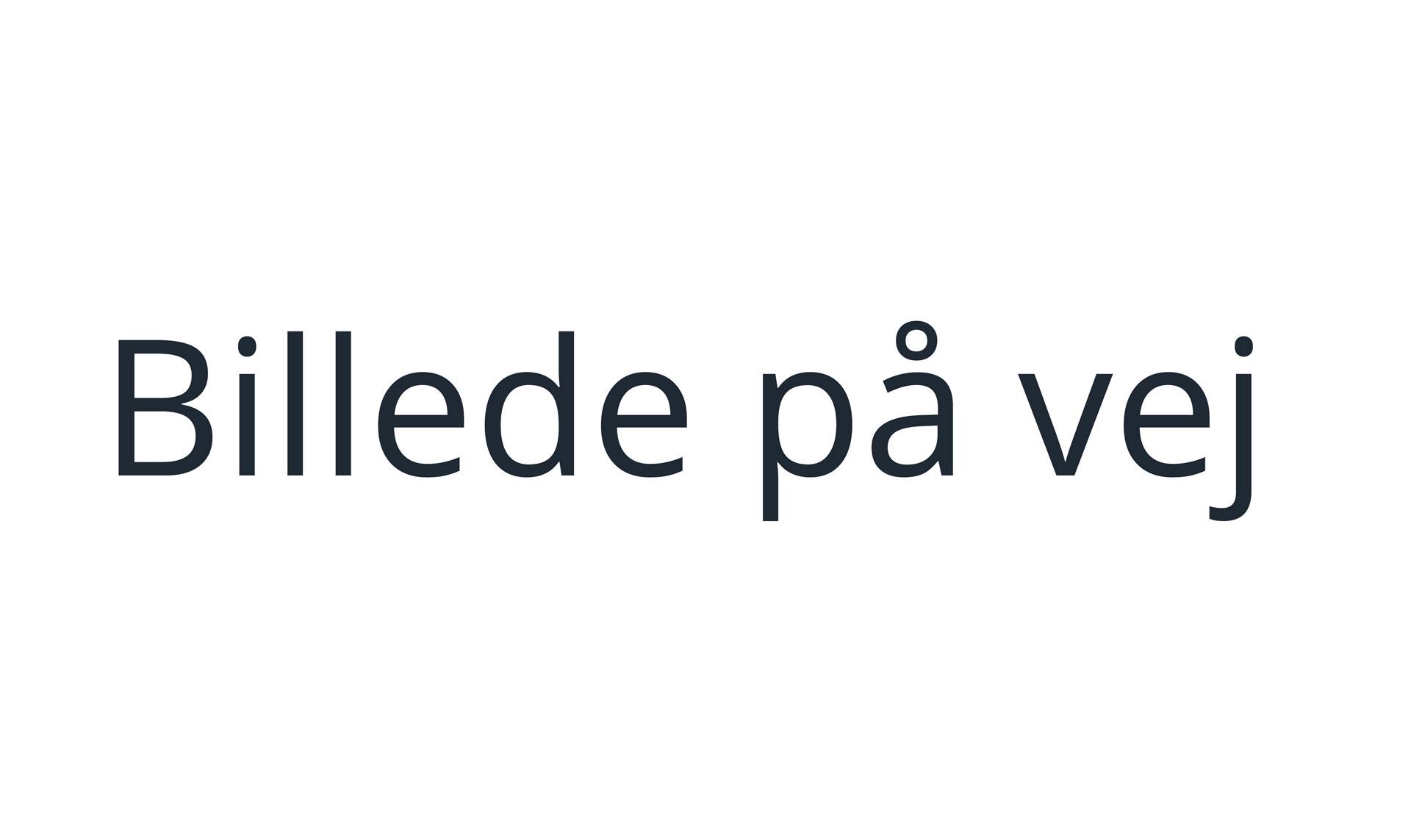 Helle Harnisch